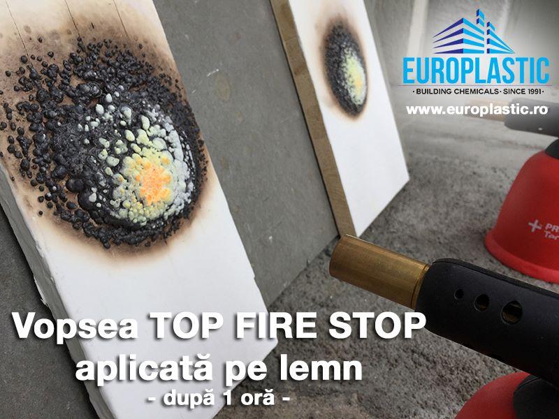 TOP FIRE STOP®, vopseaua termospumabila de la EUROPLASTIC, previne incendiile si limiteaza raspandirea focului. Protectie la foc peste 3 ore, fara distrugerea peretilor