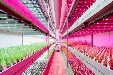 2..Vertical Farm