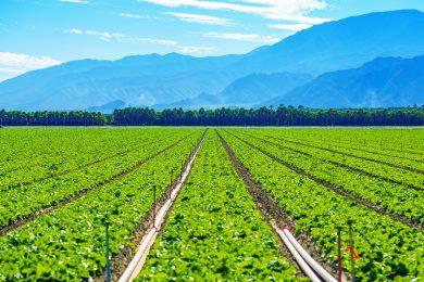 Grup-de-pompare-pentru-agricultura-small