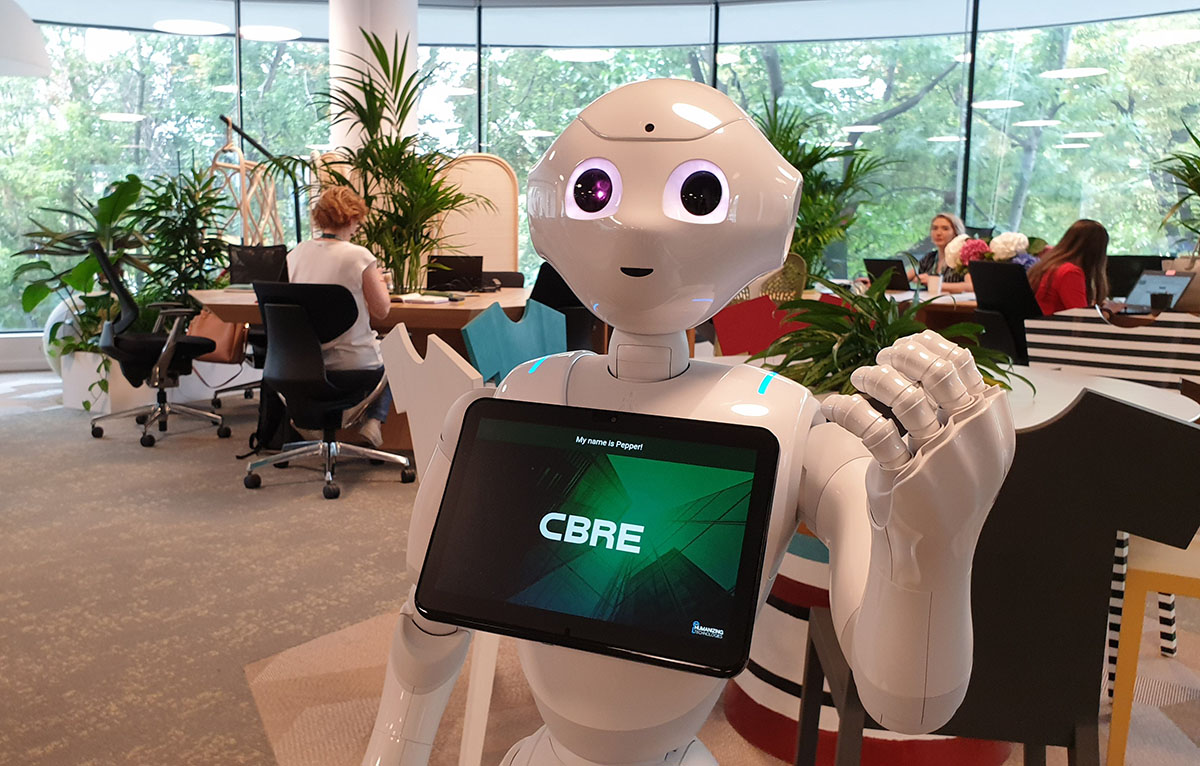 Premiera pe piata din Romania: PepperEscu, primul robot care lucreaza intr-o companie imobiliara