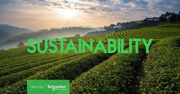 Schneider Electric si Roca Group, parteneriat pentru accelerarea decarbonizarii