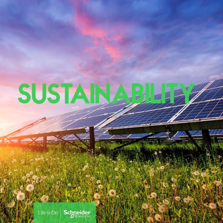 Schneider Electric si Grupul VELUX sunt parteneri in promovarea energiei regenerabile