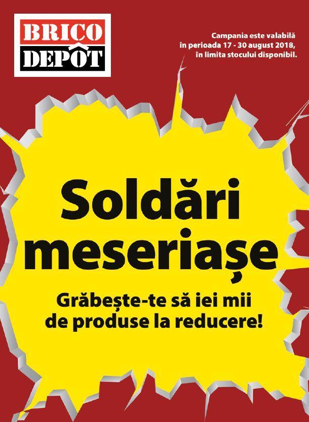 Brico Depôt anunță campania de soldări meseriașe