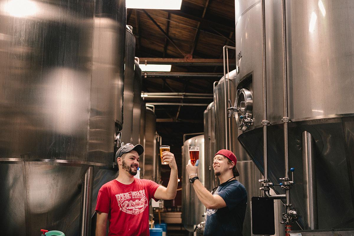 Grupurile de pompare Master Engineering pentru fabrici de bere. Afla ce tipuri de pompe poti folosi