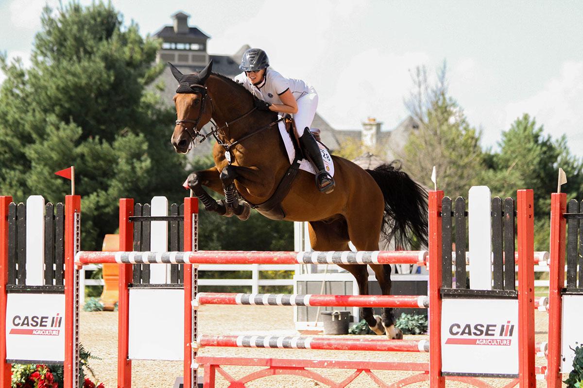 Arenele si halele metalice pentru echitatie, cea mai buna solutie pentru cai de la Master Metal